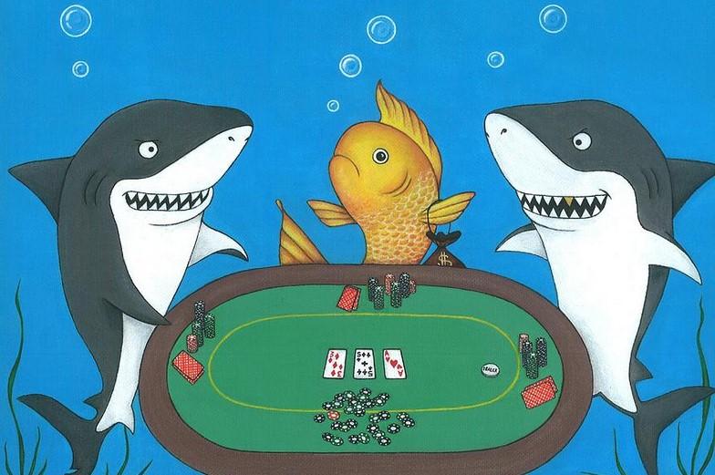 Chiến thuật chơi Poker: Cách nhận biết người chơi Poker tồi, cách để săn người chơi dạng cá